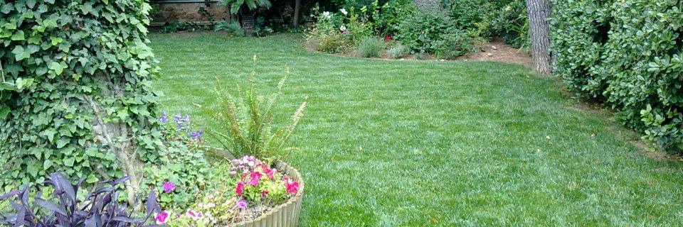 Ο χλοοτάπητας και ο κήπος όπως πρέπει να είναι