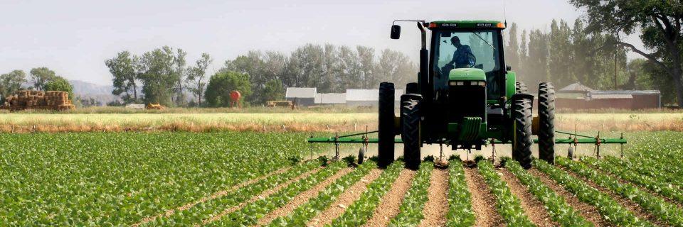 Με εμπειρία και γνώση στο πλευρό του αγρότη